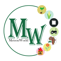 Metson World